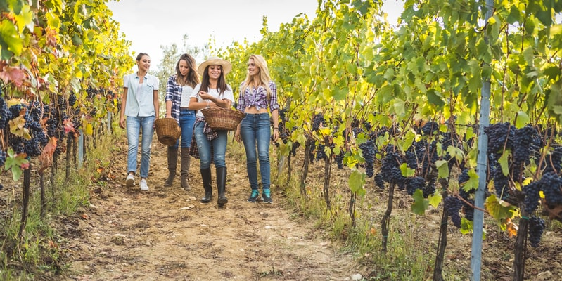 Weinprobe Stuttgart Junggesellinnenabschied
