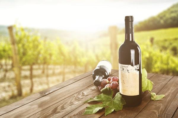 Junggesellinnenabschied Ideen für Frauen: Weinprobe mit den Mädels