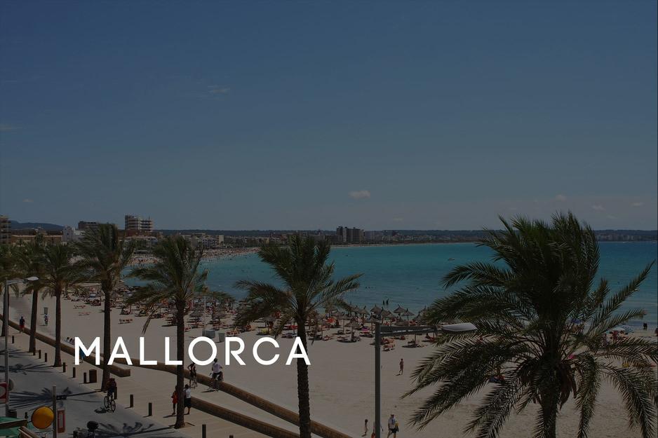 JGA planen lassen Mallorca